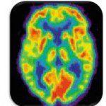 chief mindset officer brain-150x150