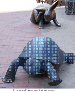digital tortoise versus digital hare